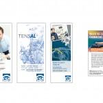 KSM Castings Group Flyer und Anzeige